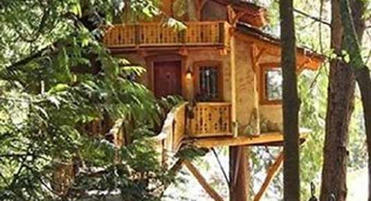 Grand Treehouse